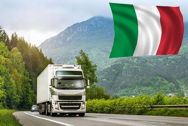 Бланк итальянского разрешения: внесение данных по массе